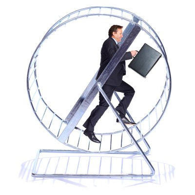 The Five Minute Guide Hamster Wheel Human